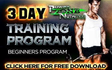 Free Weight training Program 3 day split